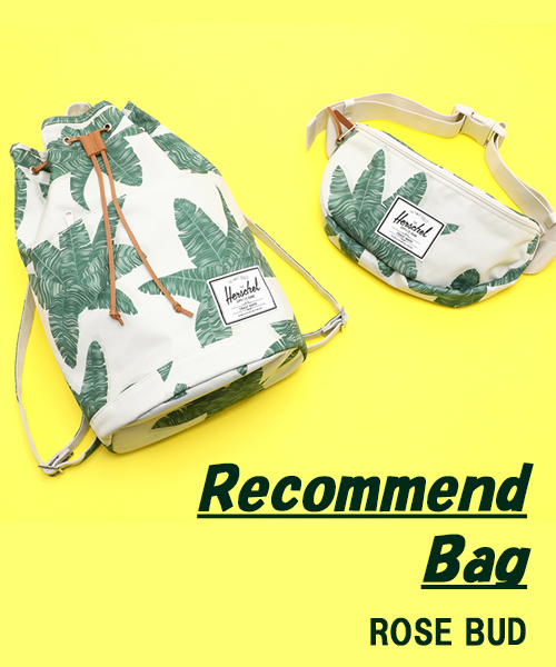 Recommend Bag!